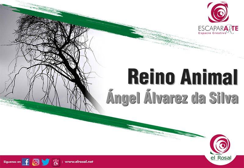 Reino animal, por Ángel Álvarez da Silva