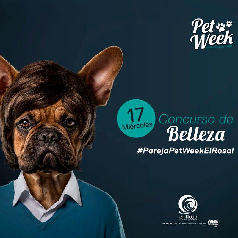 CONCURSO DE BELLEZA PET WEEK