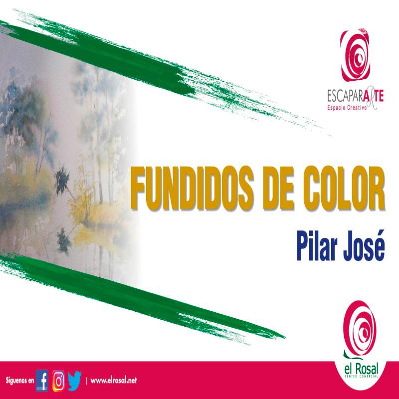 """""""Fundidos de Color"""" de Pilar José"""